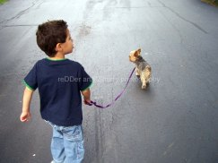 CHILD_boy and his dog_Copyright_KSherry013