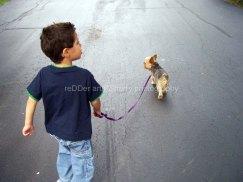 CHILD_boy and his dog_Copyright_KSherry013