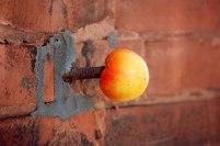 Brick_tomato_CR-KSherry
